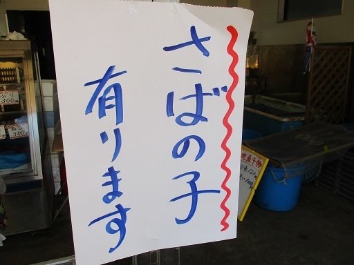 2IMG_4761.jpg